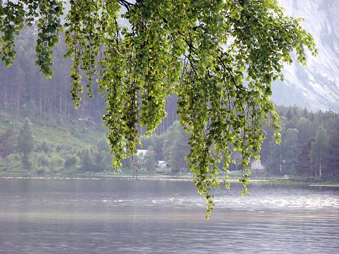 Vann er godt å se på - enten du kommer fra båt eller ei. Foto: Yngvar Halvorsen.
