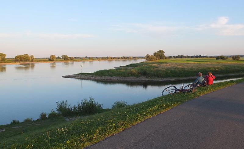 Sommerkveld på diket som avverger at Elben går over styr.