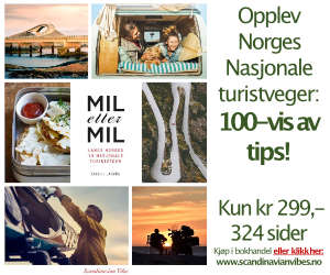 Annonse Scandinavian Vibes